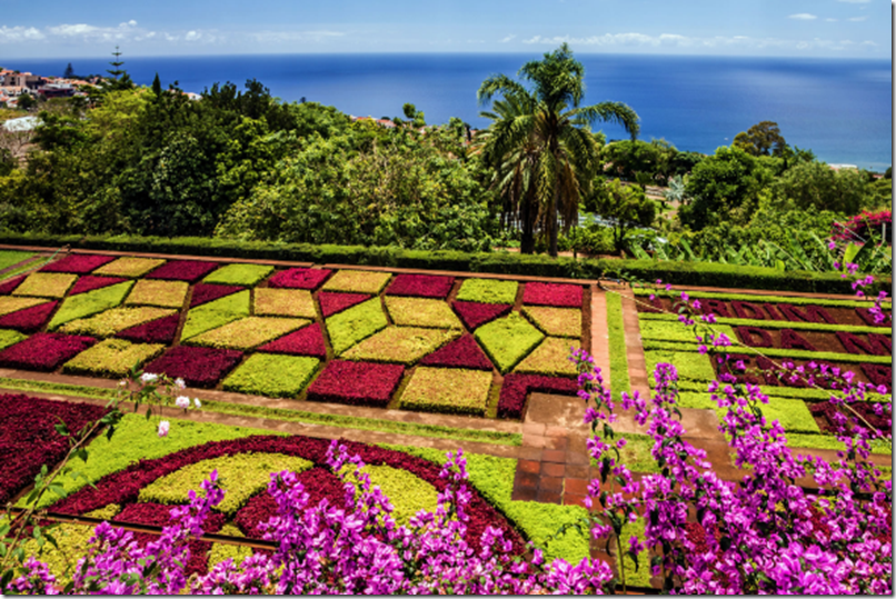 Botanical Gardens and views over the bay of Funchal