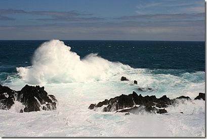 Madeira blog eiryl porto moniz