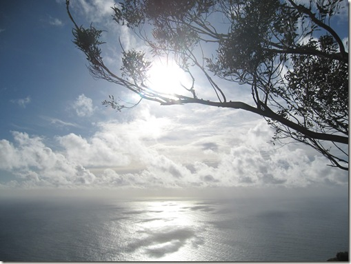 madeira news blog 1001 becky some beautiful shimmery sea taken from Cabo Girao at the beginning of January