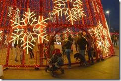 Christmas lights in Funchal