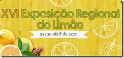 Lemon exhibition logo