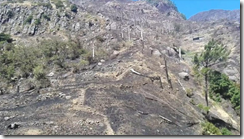 Scenes of desolation at Serra d'Agua