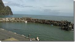 Faial harbour
