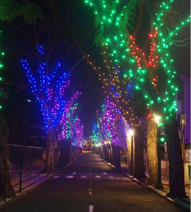 Christmas lights in Bom Jesus, Funchal