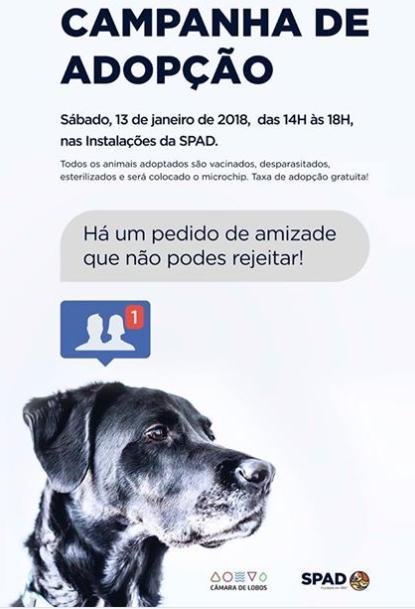 SPAD / Câmara de Lobos poster