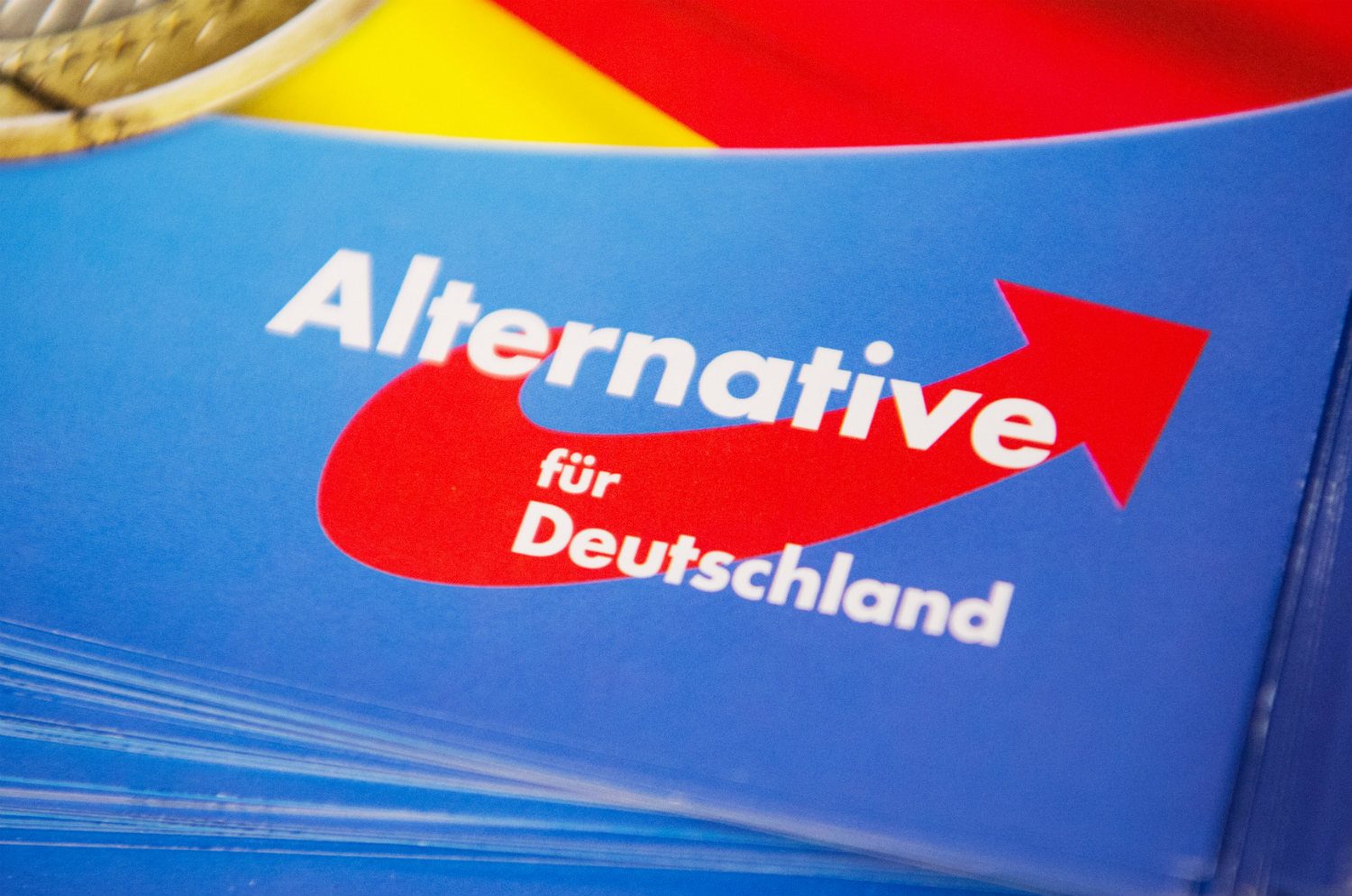 AfD to promote German departure from EU possibly