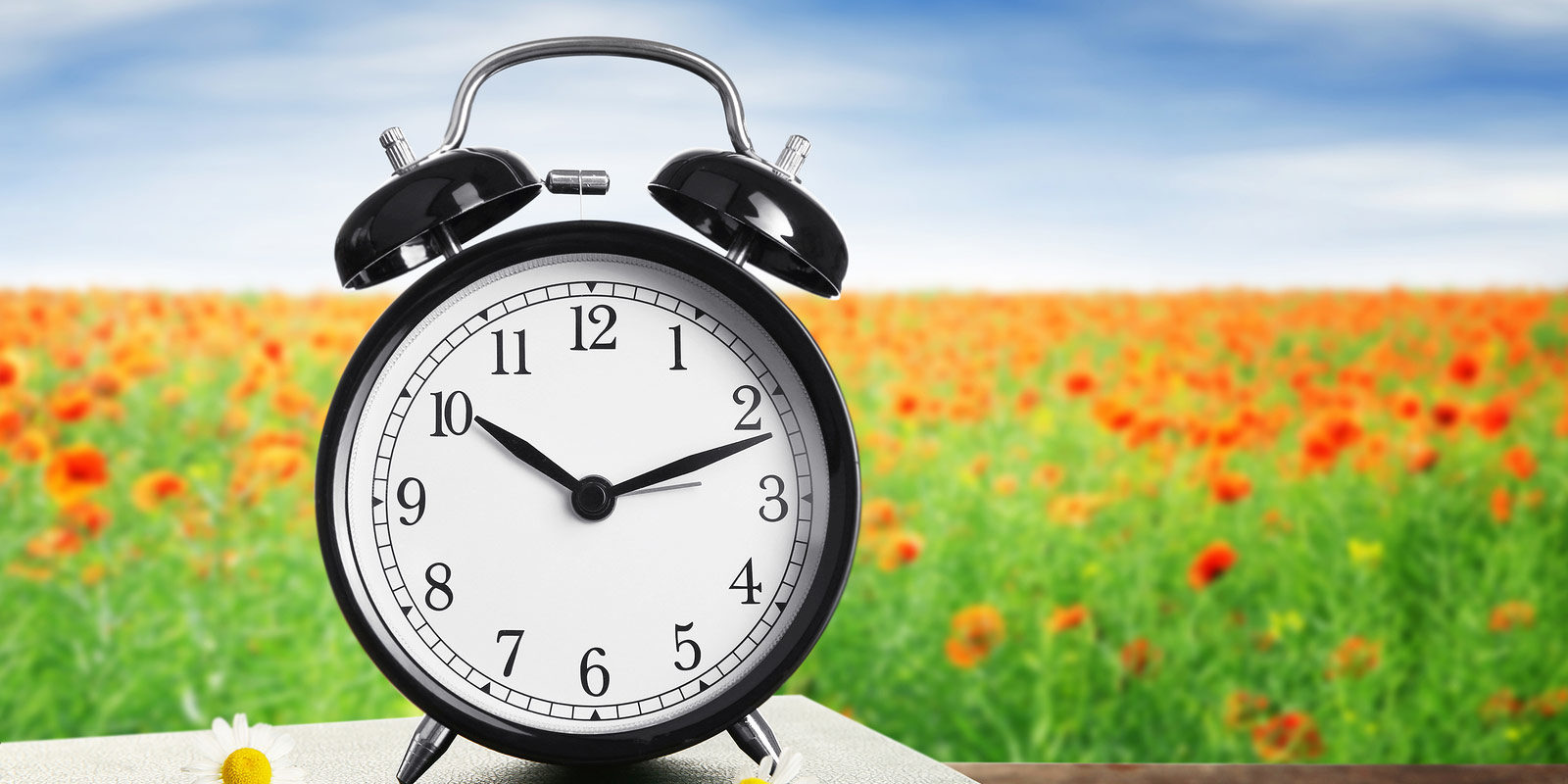 Spring clock change graphic