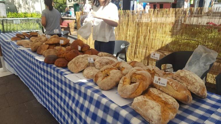 Bread Fair photo